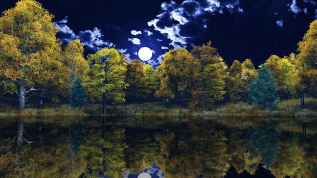 【MMDステージ配布】夜の晩秋の森 TL8【スカイドーム】