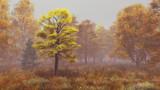 【MMDステージ配布】霧の晩秋の森 TL9【スカイドーム】