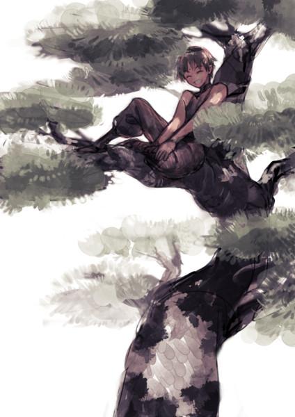 あの木登りが好きな男の子が神様になったそうだよ マンドラゴラ さんの