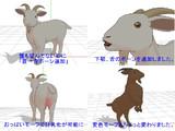ヤギのモデルを改修しました。
