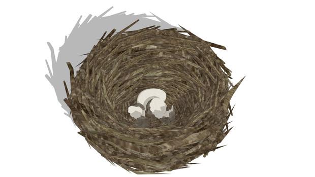 【配布】鳥の巣