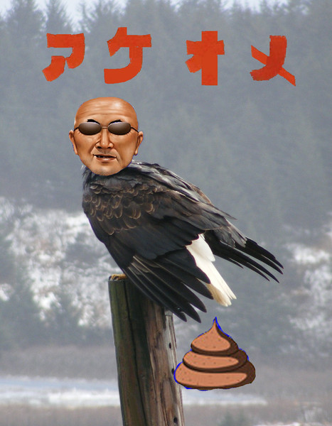 鷲(53)