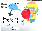 リンゴの秘密