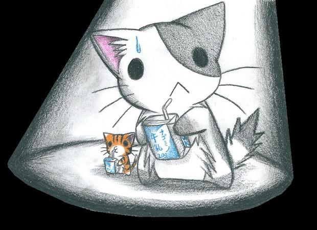 夜間牛乳にゃんこ