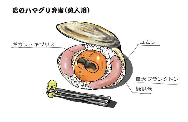 男のハマグリ弁当