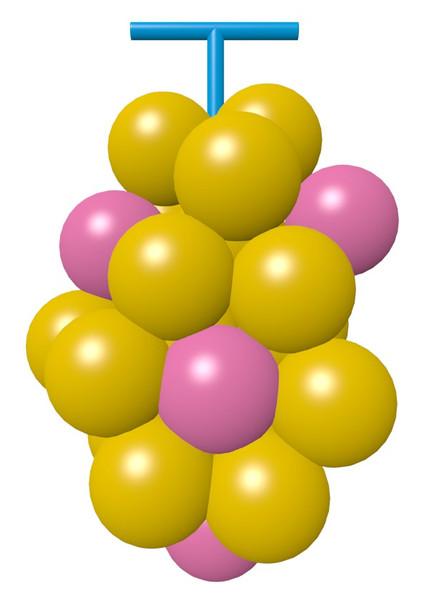 色の変わったブドウ2