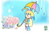 梅雨の時期