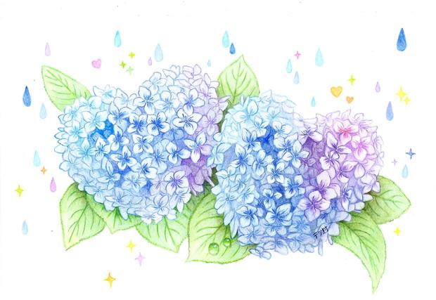 ハートの紫陽花色鉛筆画 テツ村 さんのイラスト ニコニコ静画