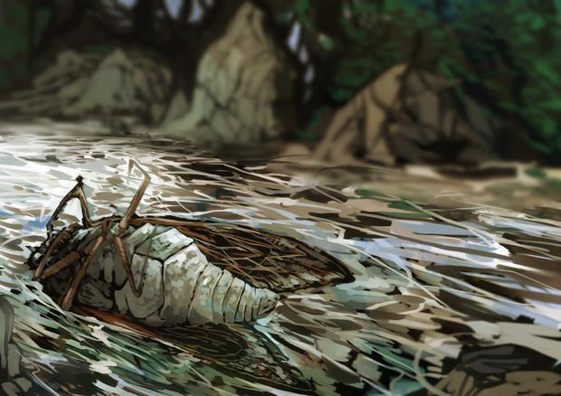 川にたそがれる蝉の死骸