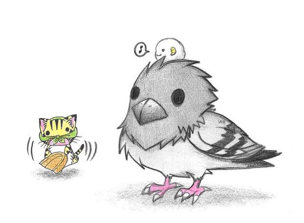 鳩と踊るにゃんこ
