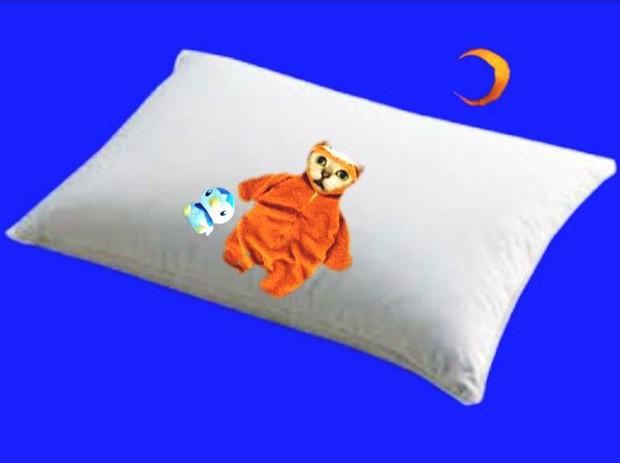 おやすみMUR猫