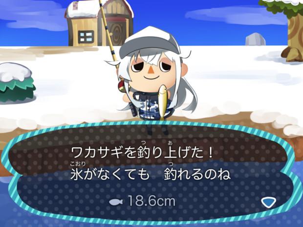 秋刀魚を釣るゔぇーるぬい