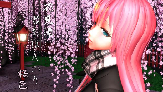 夜桜ルカさん