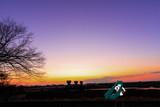 夕暮れの景色を眺めるミクさん