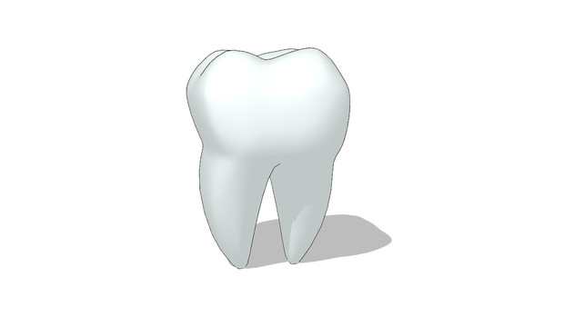 【MMD】臼歯