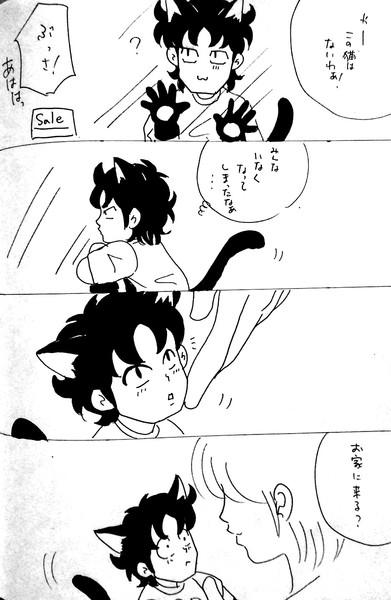 にゃんこ零さん①