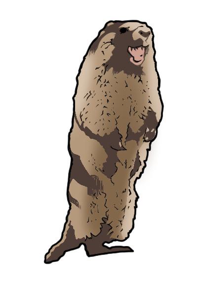 絶叫するビーバーに似た一般哺乳類