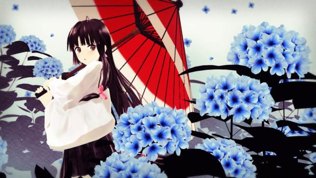 祥鳳と紫陽花