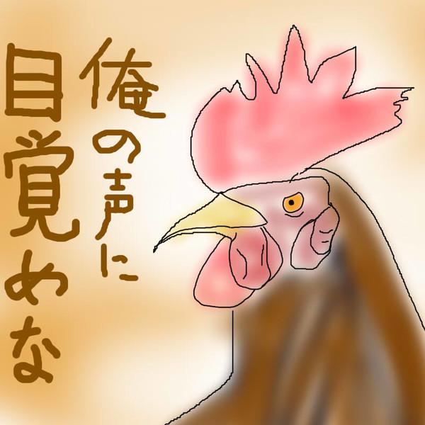 どうぶつ図鑑~ニワトリ~