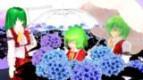 うちの風見家と紫陽花