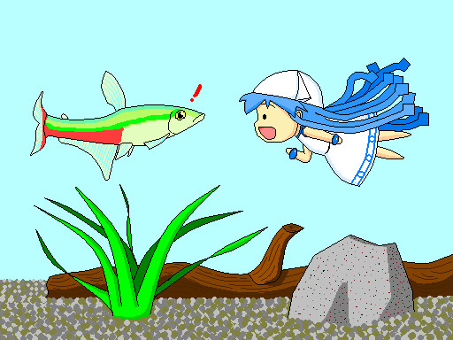 ミニイカ娘と熱帯魚 修正版