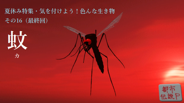 【夏休み特集・気を付けよう!色んな生き物-その16(最終回)】 蚊(カ)