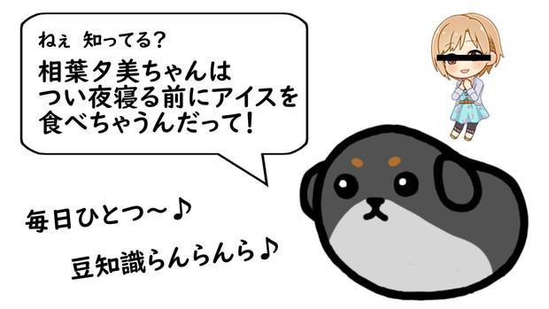 【豆しば】ねぇ(夕美ちゃんの可愛さ)知ってる?【黒柴】