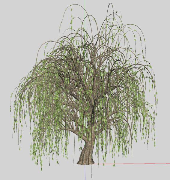 Mmd巨大な柳の木pmx配布 溯北p さんのイラスト ニコニコ静画