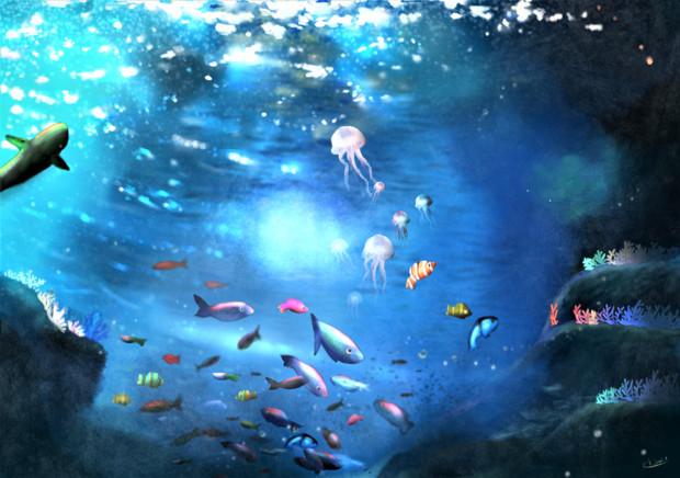 海の宝石箱 サンゴ礁
