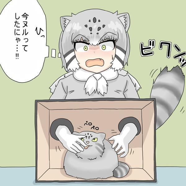 箱の中身を当てようとするマヌルネコちゃん