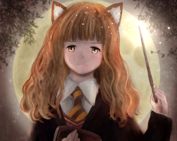 I love Hermione! Harry potter
