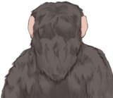 うき猿(後ろ姿)