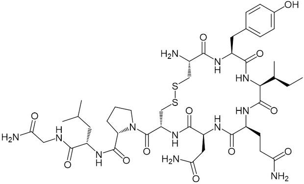 オキシトシン オキシトシンを男性にたっぷり出させる!幸せホルモンを分泌させて浮気しない彼氏に変える!