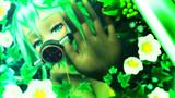 華水槽・緑