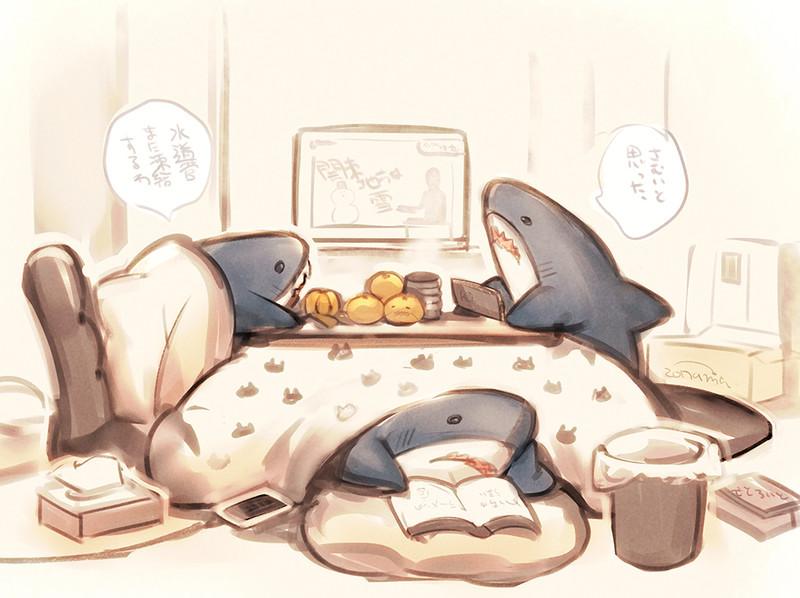 サメちゃん