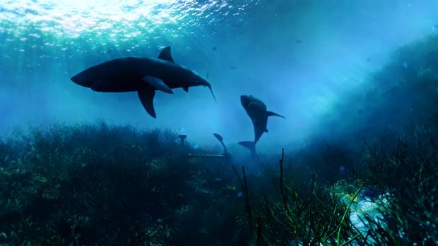 【フリー素材】アニメ風の海・海底・海中 その1