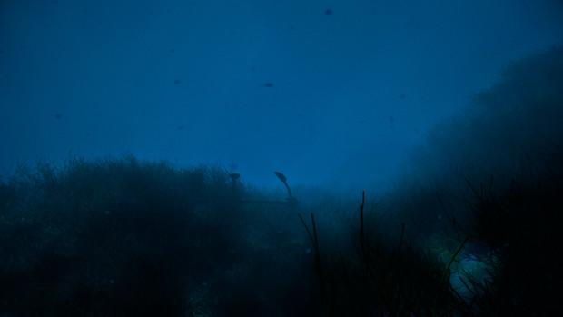 【フリー素材】アニメ風の海・海底・海中 その3 【暗い深海】