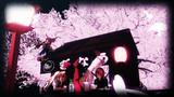夜桜で一杯【東方ニコ楽祭・花見】
