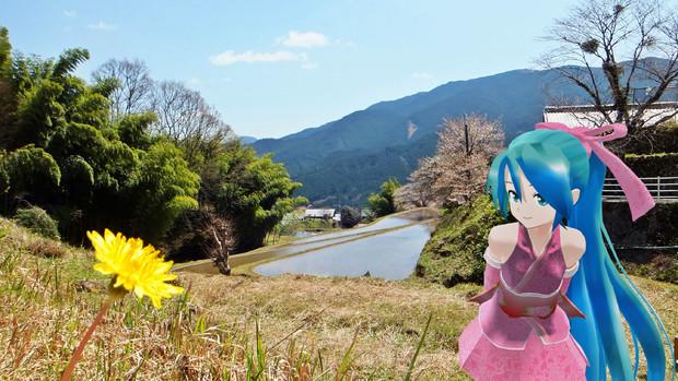 【ミクさんと】 美杉村の春 【三重県】
