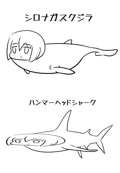 シロナガスクジラとハンマーヘッドシャーク