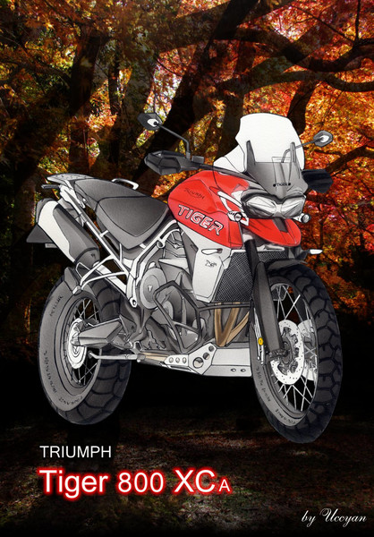 TRIUMPH Tiger800XCA