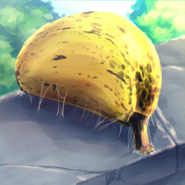 バナナのサナギ