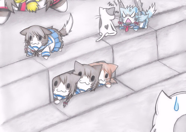 野良吹雪型猫