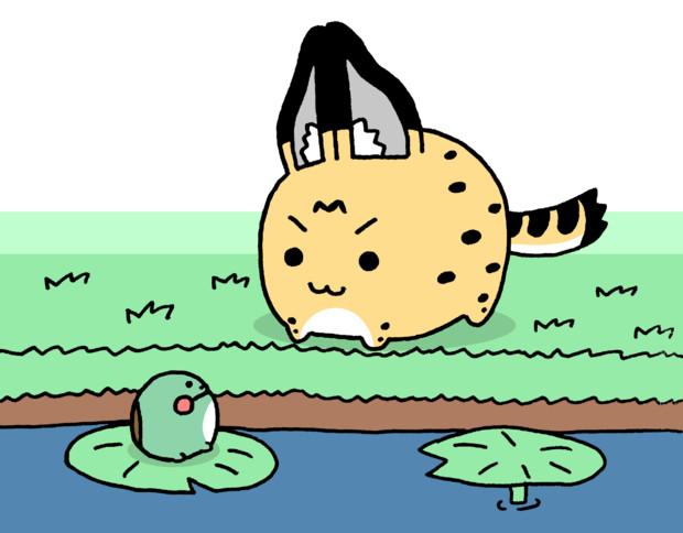 カエルと会ったサーバルちゃん