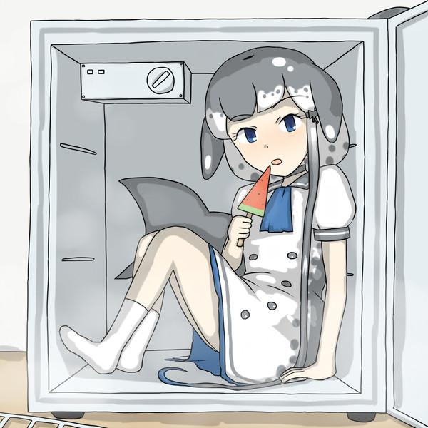 冷凍庫の住人