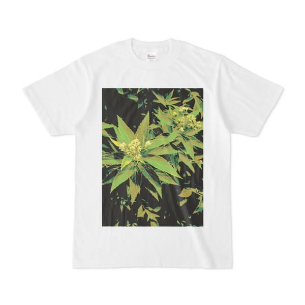 シンプルデザインTシャツ 黒緑リーフ
