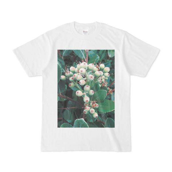 シンプルデザインTシャツ 実