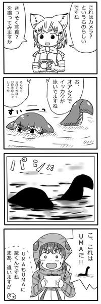 カメラマンスナネコちゃん