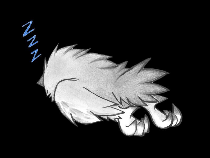 寝るフクロウの子ども