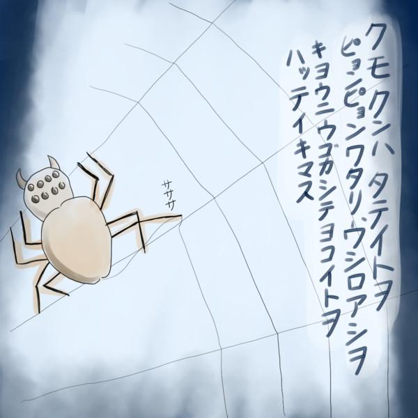 クモの営み